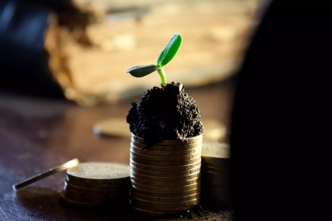 在农村如何挖到第一桶金? 2
