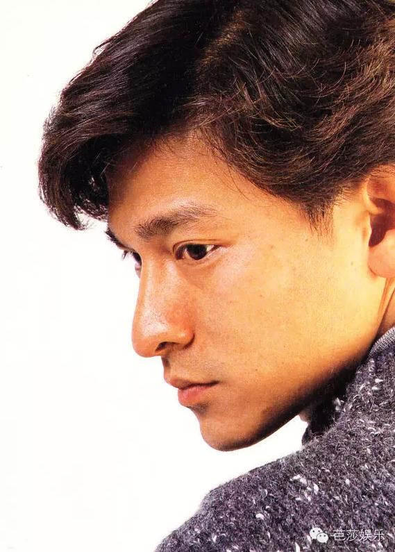 青春里的刘德华30年150部电影2000首歌 2