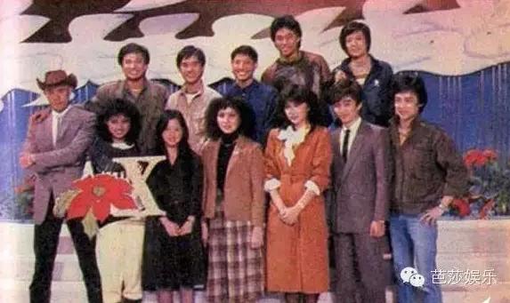 青春里的刘德华30年150部电影2000首歌 3