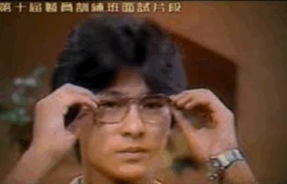 青春里的刘德华30年150部电影2000首歌 4