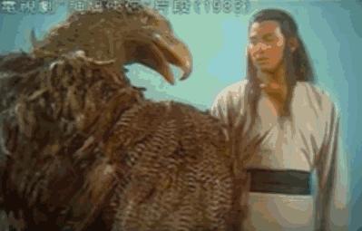 青春里的刘德华30年150部电影2000首歌 5