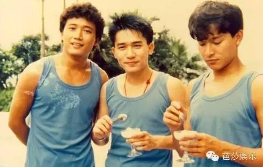青春里的刘德华30年150部电影2000首歌 8