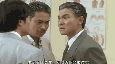 青春里的刘德华30年150部电影2000首歌 13