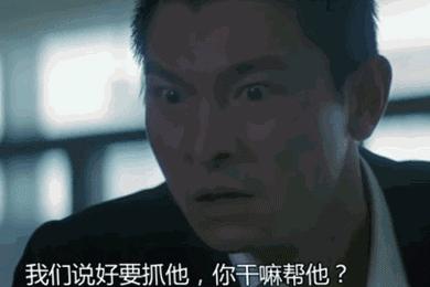 青春里的刘德华30年150部电影2000首歌 32