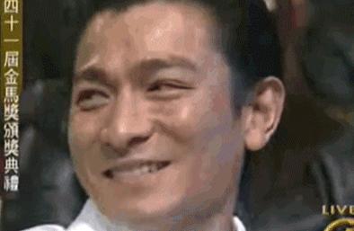 青春里的刘德华30年150部电影2000首歌 33
