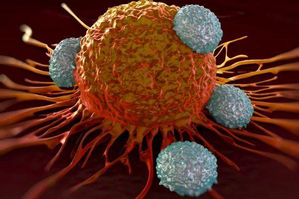 治肠癌,肝癌,子宫癌,胃癌中药方 1