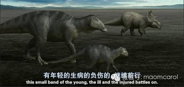 这些恐龙有关的电影、绘本送给资源荒的宝妈们 6