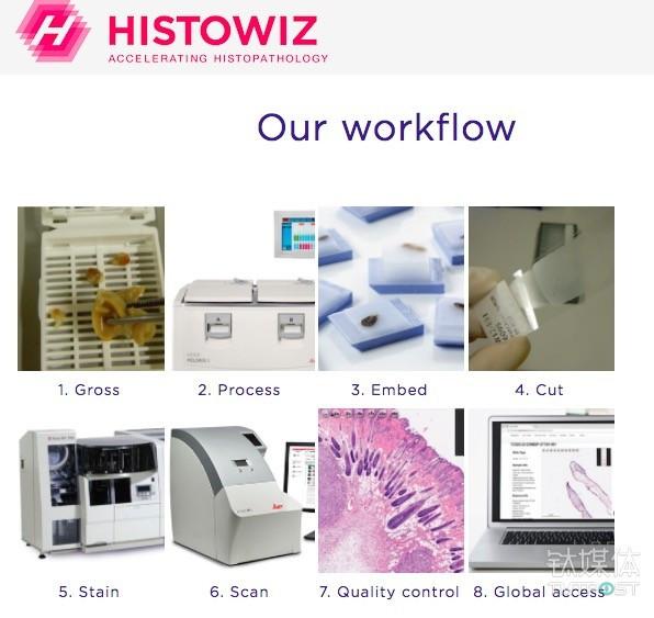 传统病理学发展太慢HistoWiz 想在云上搭建全球最大的癌症数据库 3