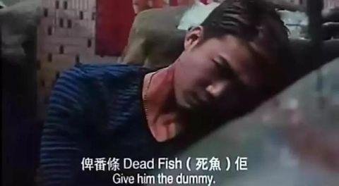 我们青春是古惑仔陈小春 郑伊健又燃又热血! 14