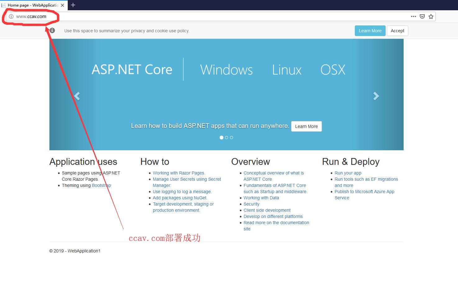 .net core网站部署成功