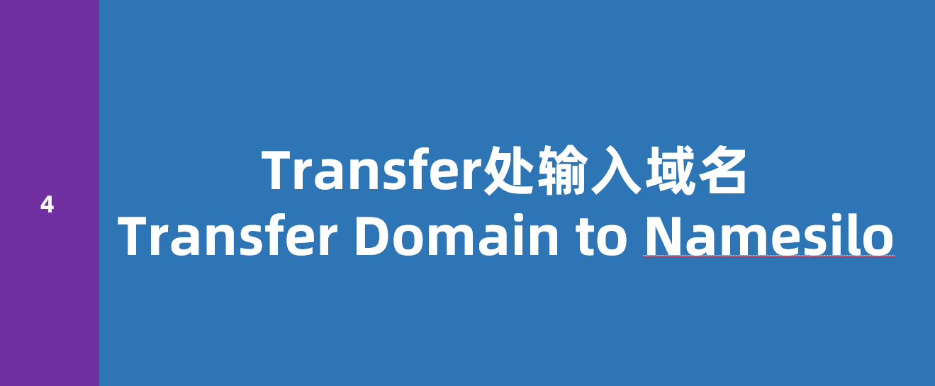 Transfer处输入域名