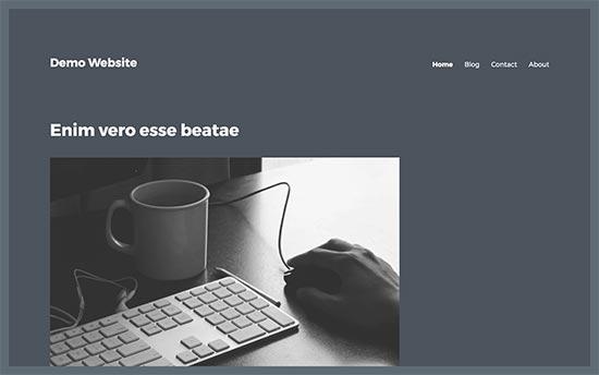 WordPress主题中的空白边栏区域