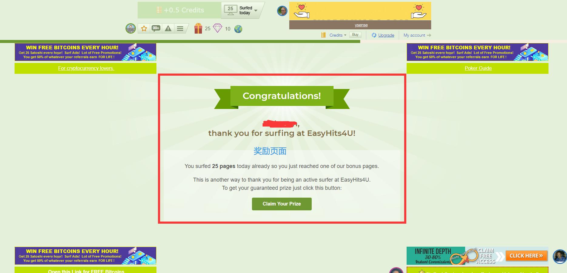 如何通过免费国外流量Easyhits4u赚钱 13