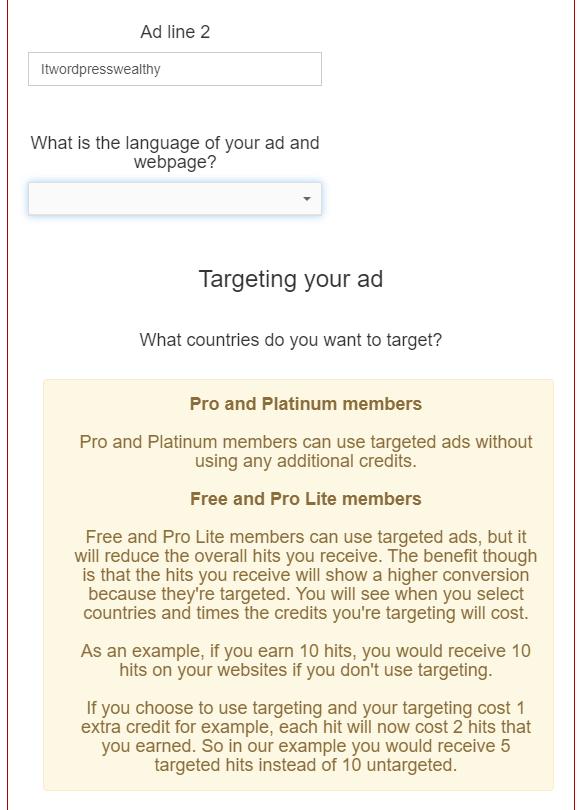 选择网站语言